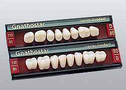 Gnathostar Set of 8 / kolor 340/3E